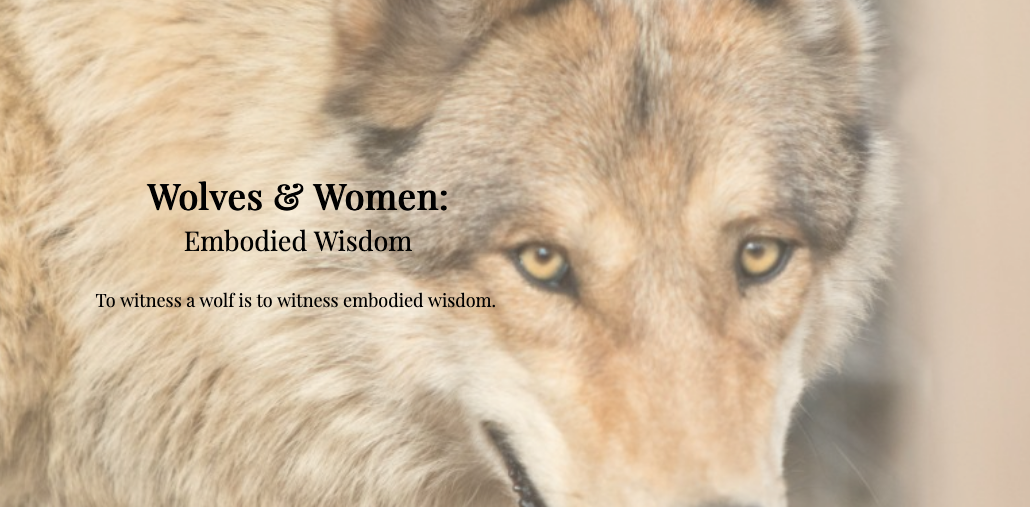 cde4324a8 Exclusive discount code for WOMEN & WOLVES: Two day retreat!