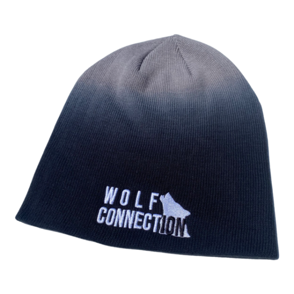 Ombre slouchie beanie with Wolf Connection logo